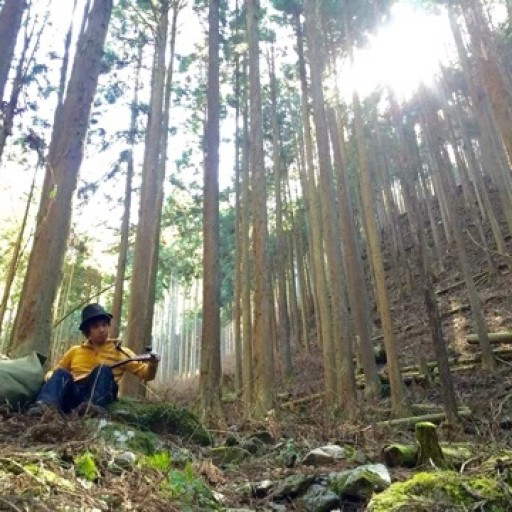 森のシンガーソングライター 杉林にて