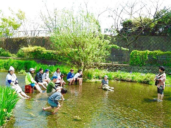 川遊び ライブ