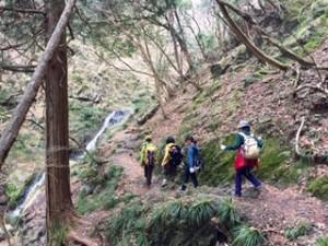 棒ノ折山 トレイル