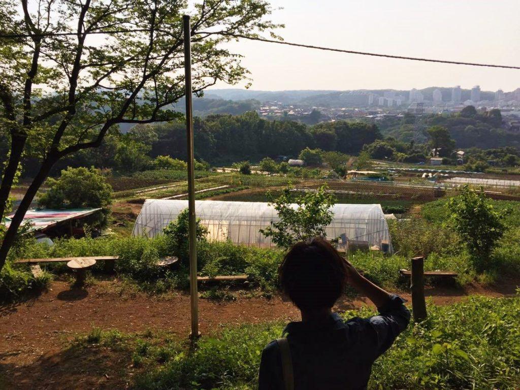 里山からの眺め