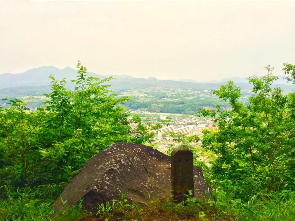 公園から見える風景