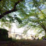 風景と感性が交わる街。レポート~耳をすませばの街を歩こう。「森の歌会 vol.22 空を飛ぶ街」