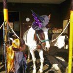 【山梨】6月★森のおんがくや〜森と馬と人の隠れ里@南アルプス市