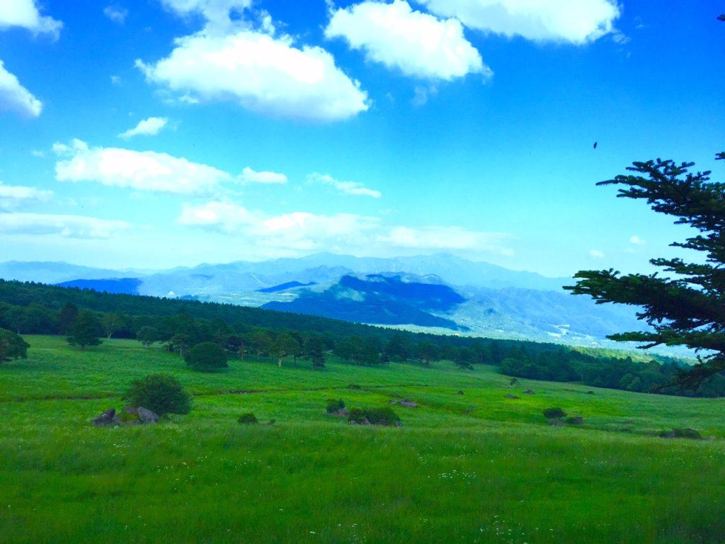 八ヶ岳牧場2