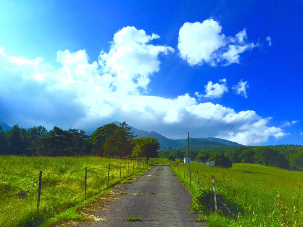 牧場の道2
