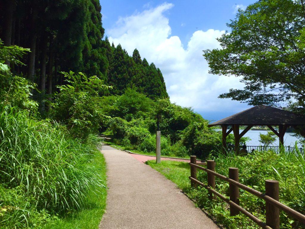 田貫湖のハイキングコース。
