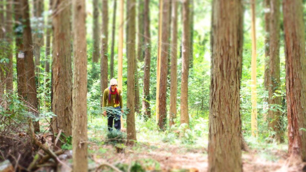 森のシンガーソングライター現る。