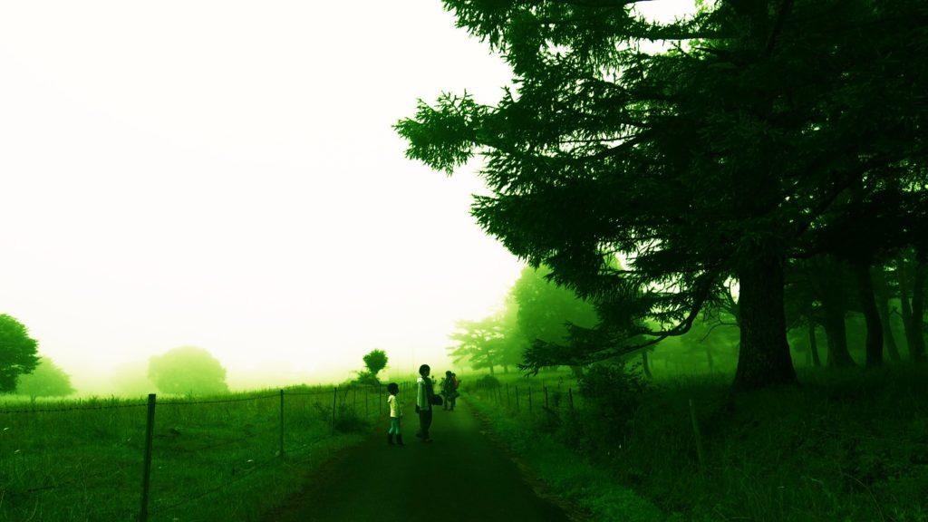 霧の中の一本の道2
