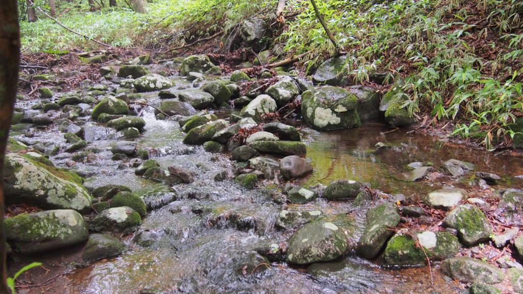 森の河辺。