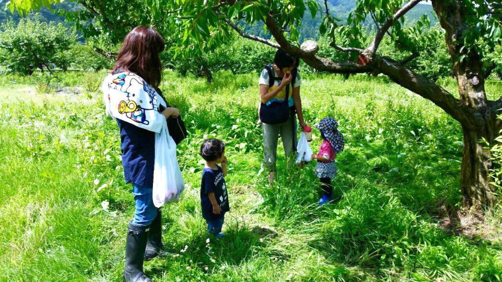 子ども達と農園2