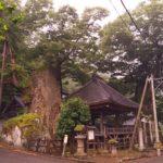根古屋神社全景。