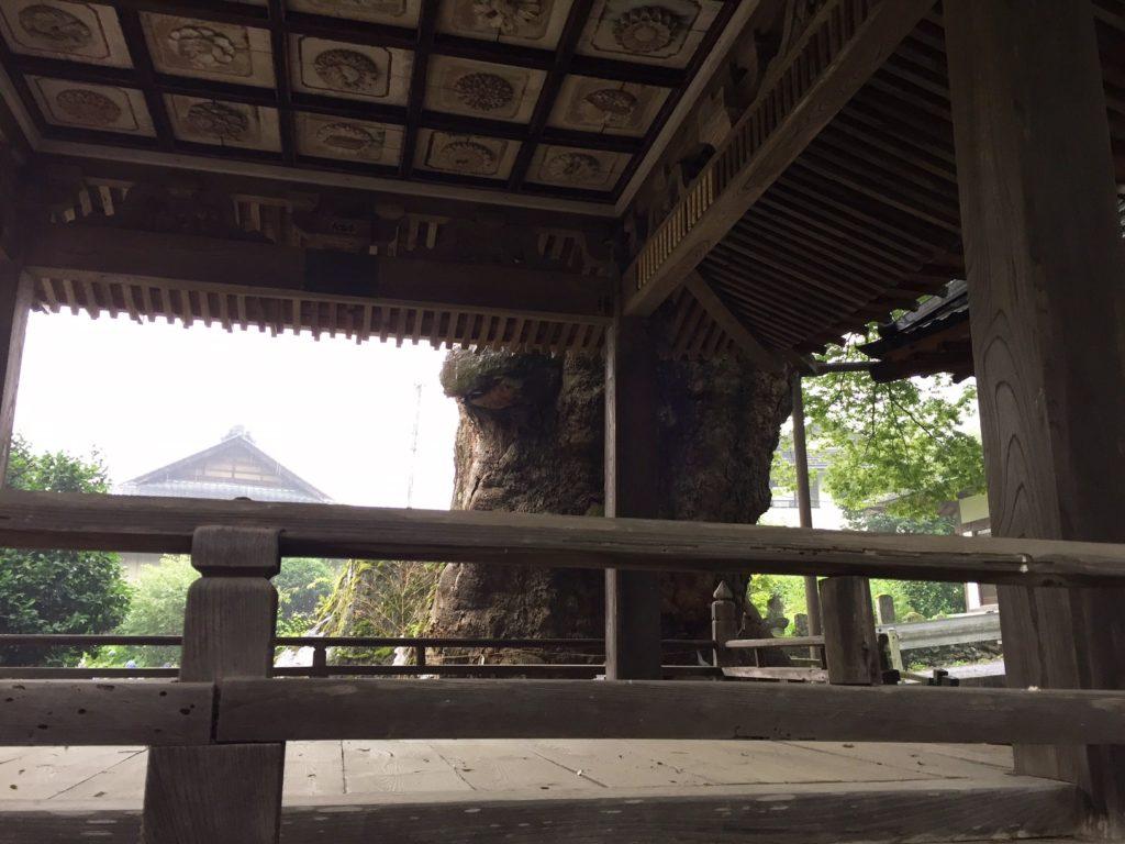 根古屋神社4