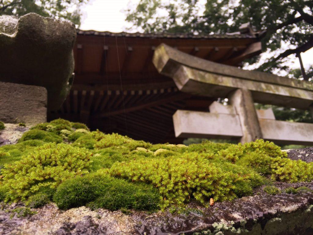 根古屋神社1
