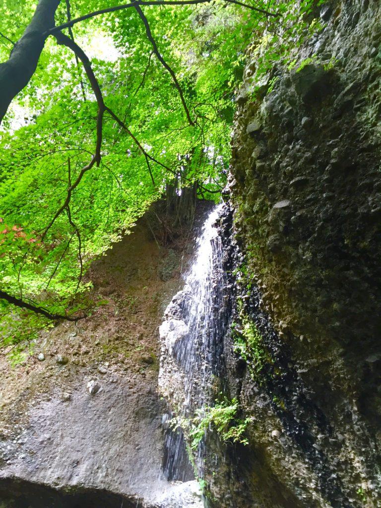 月待の滝。