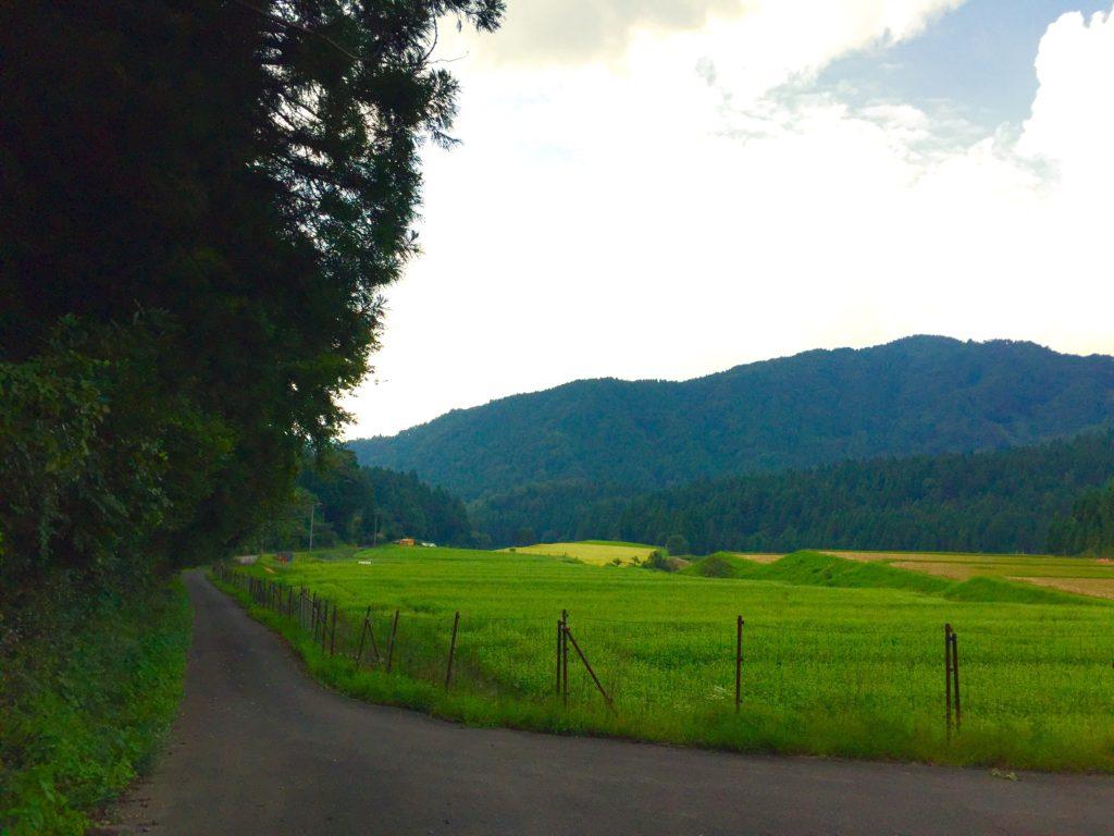 田園風景。