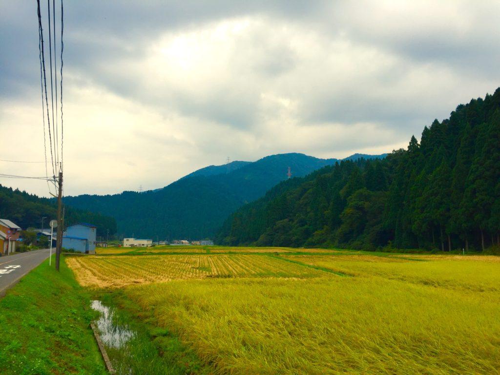 池田町の風景。