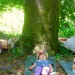【東京】10/30(日)森の中で地球と繋がろう~森で瞑想会&森の歌会
