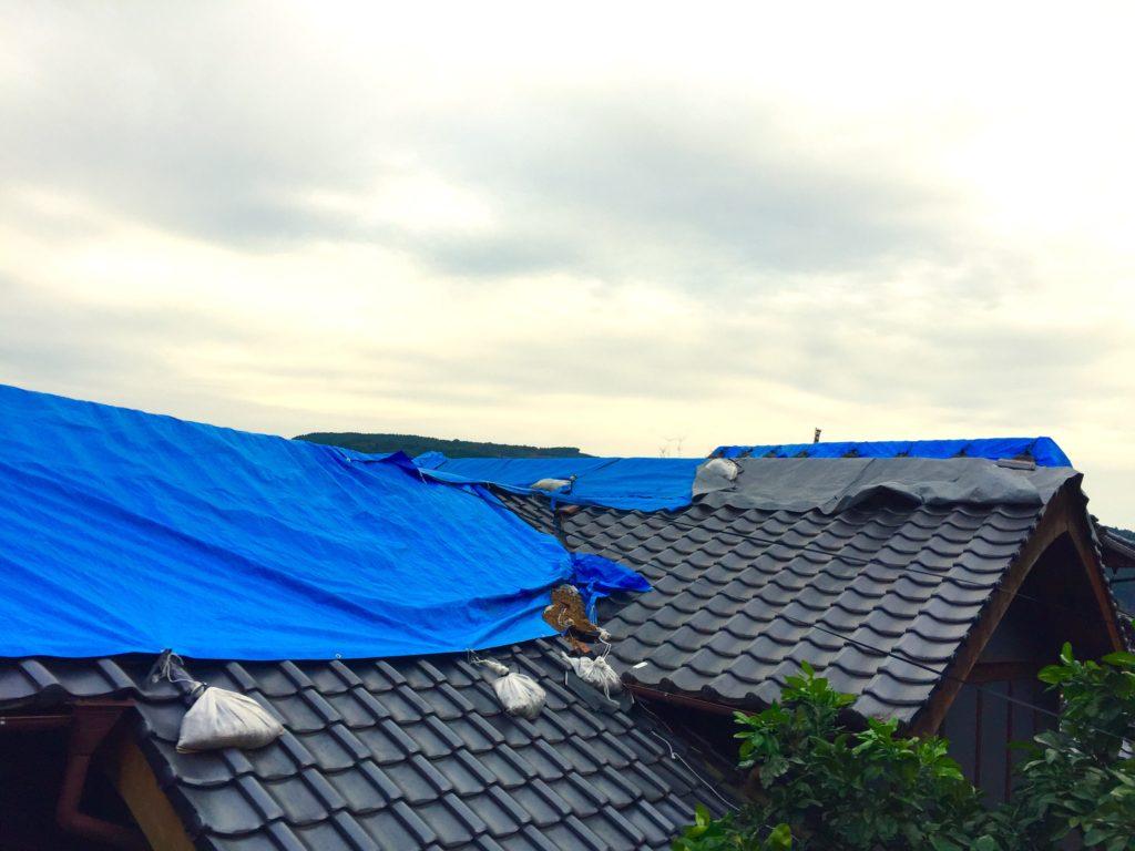 屋根にブルーシート。