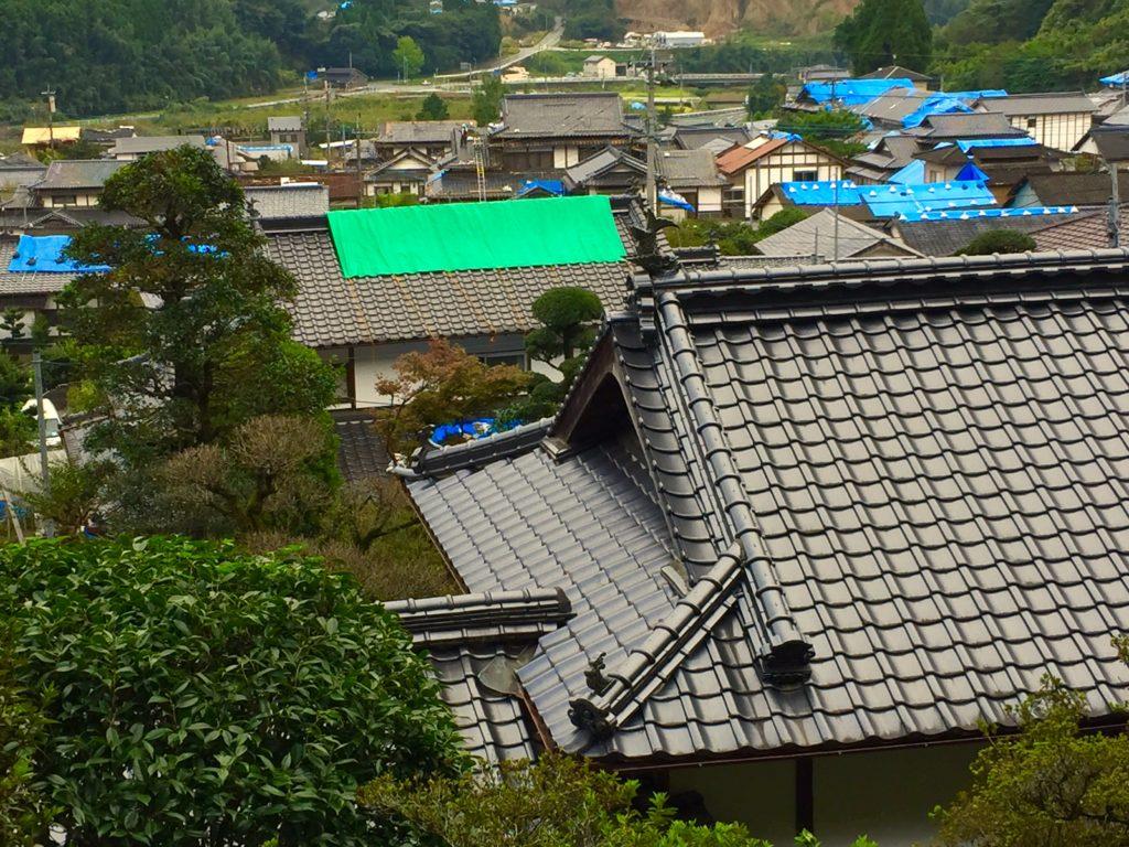 伝統の簑甲屋根。