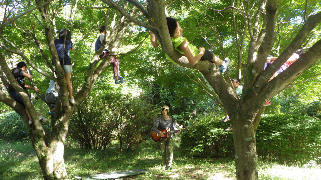 木に登って聞いてみる。