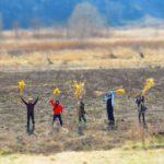 【東京】1/28(土)「あなただけの箒を作る。ススキの箒で森の歌会」@東京都府中市