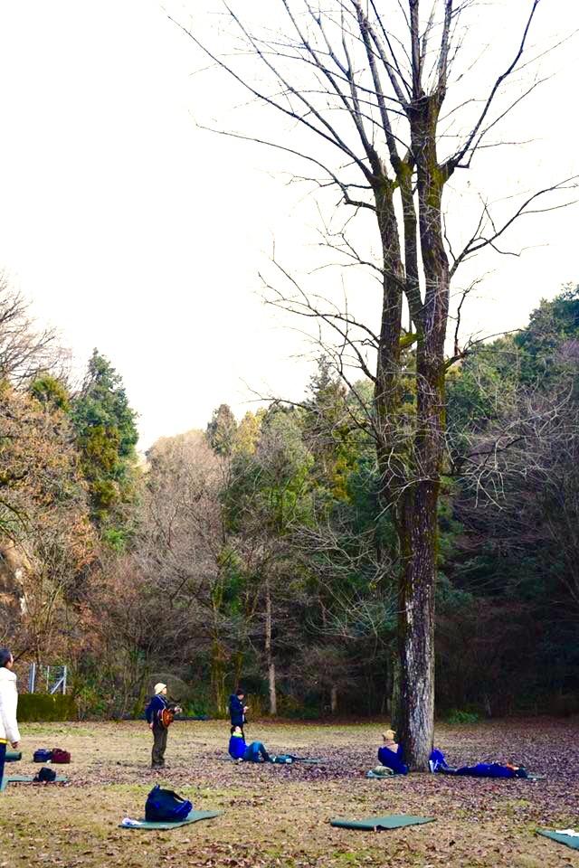 ポプラの木の広場。