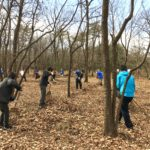 森と人の暮らし方の古代モデル「三富の平地林 千人くず掃き」