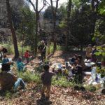 【演奏動画あり】森が味方をしてくれる日。レポート「落ち葉掃きと焚き火ライブ」
