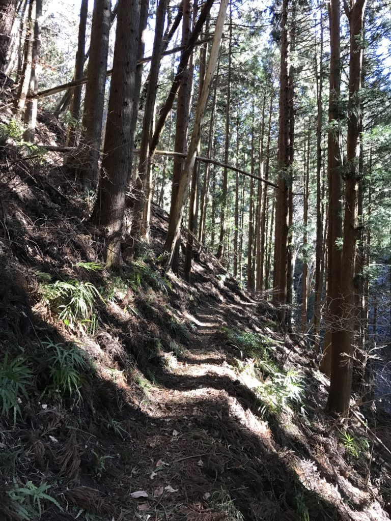 城峯登山道。