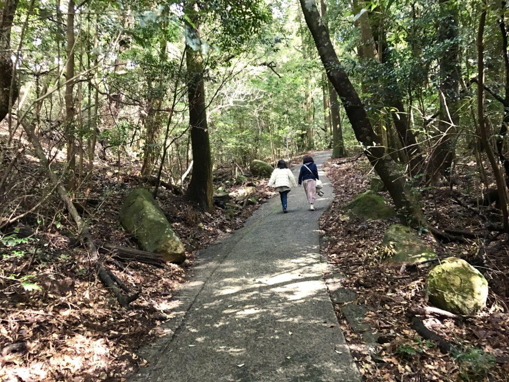 鷹鳥屋神社に続く道。