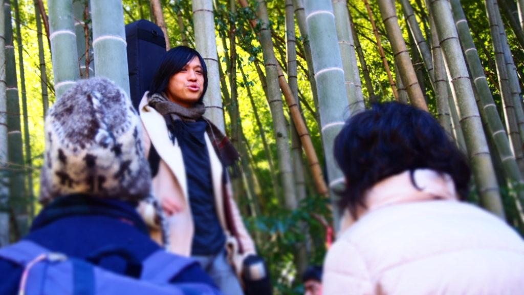 竹の解説。