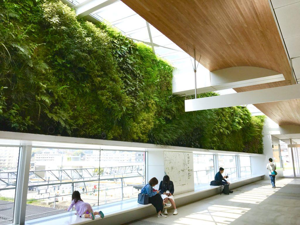 壁面緑化1