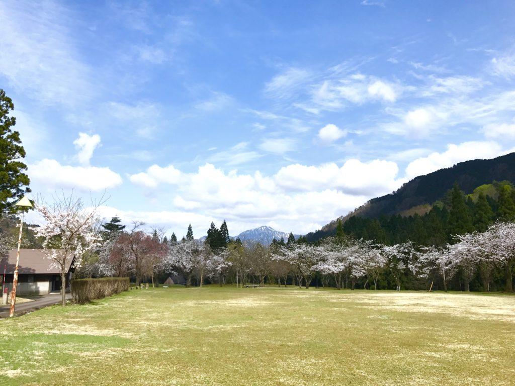 宝慶寺いこいの森。
