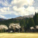 宝慶寺全景。