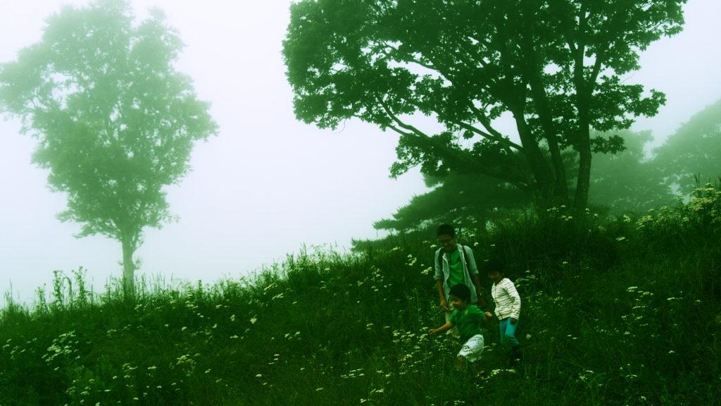 霧の中で。