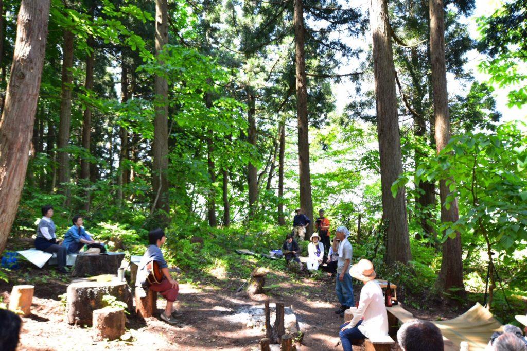 笹山の森全景。