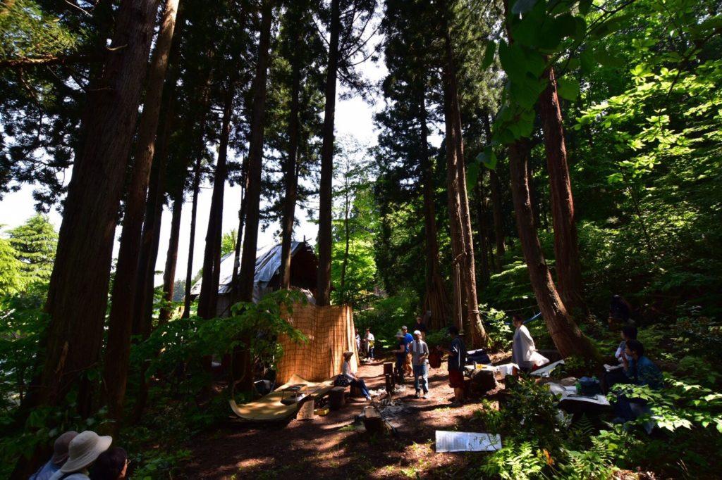 笹山の森。