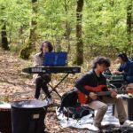 電気を通しても森に似合うバンド。森のフィールドレコーディング2日目。