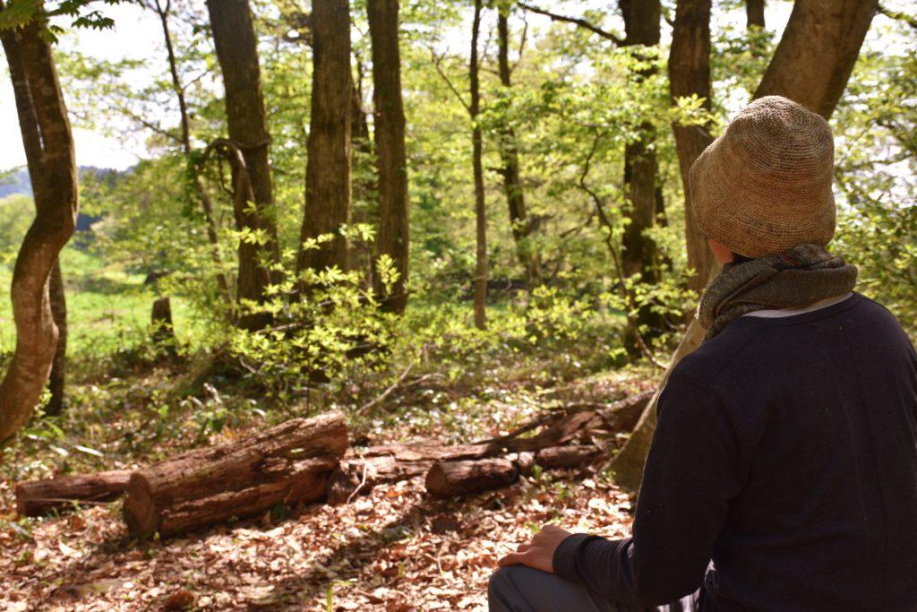 森でくつろぐ。