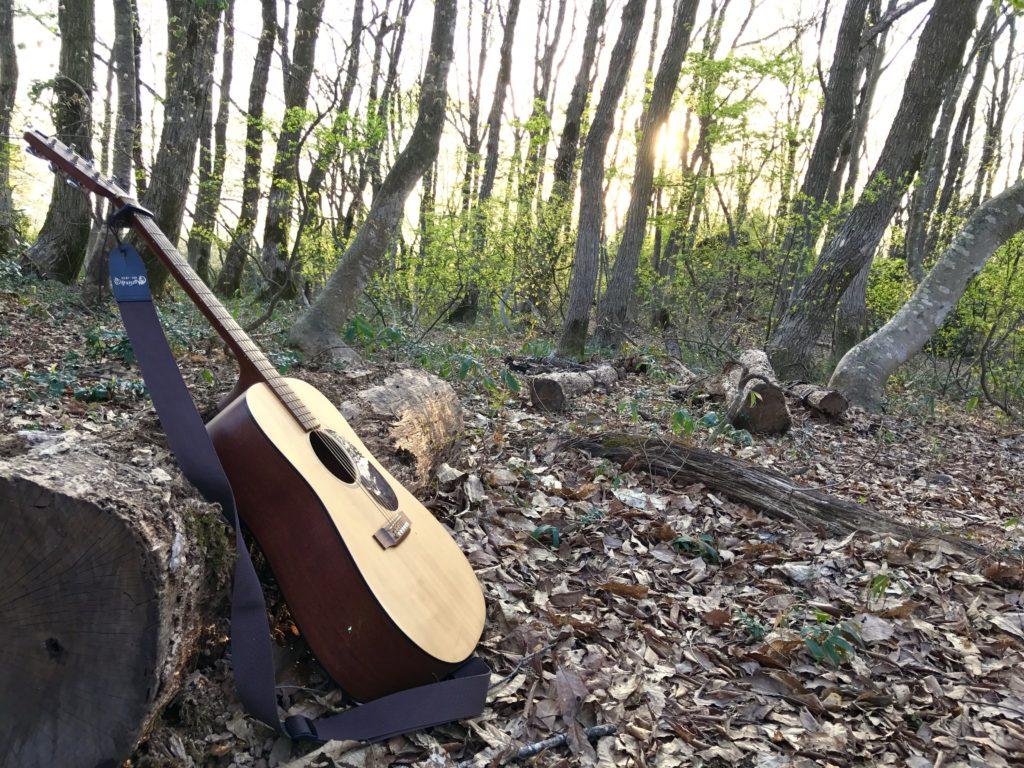 森とギター。
