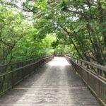 【演奏動画あり】みんなこの森が好きになる。ごろんコンサート下見編@長久手市