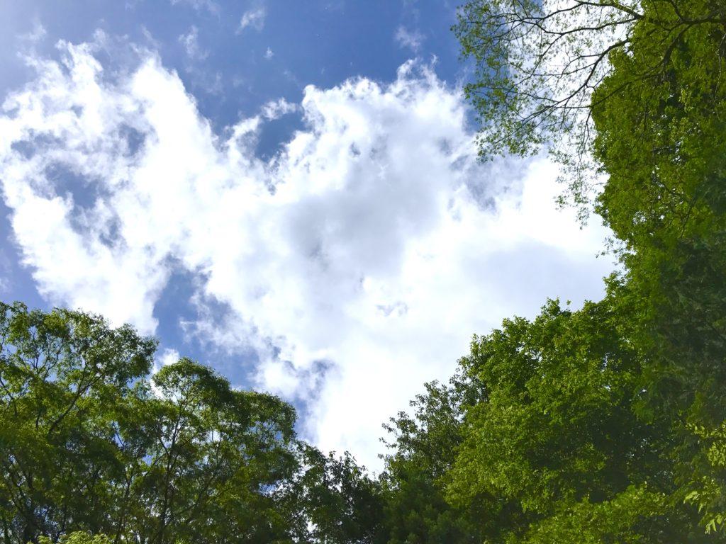 分厚い雲。