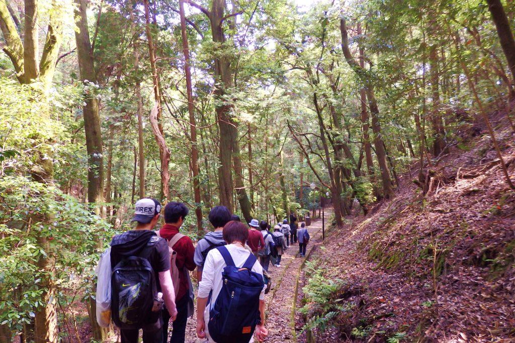 森を歩く。