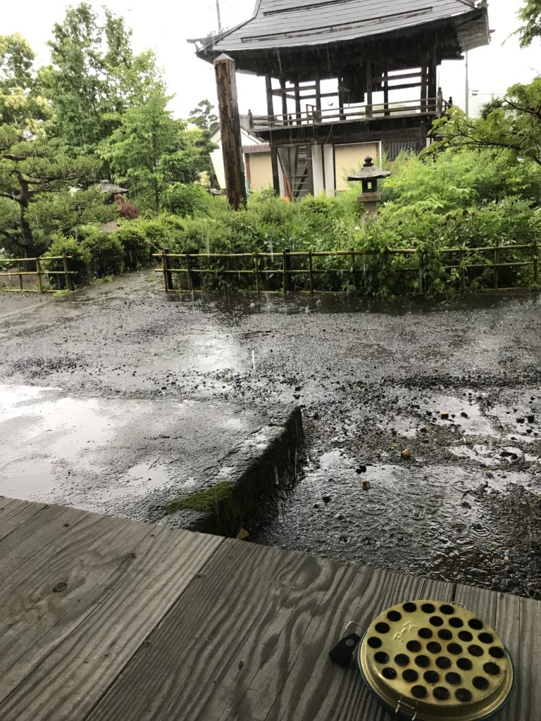 雨を眺めながら。