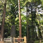 これが長野の森林文化!御柱祭〜小野神社へ。森の旅398日目。