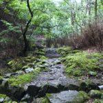 「水干」水と森への概念が変わる@多摩川源流レポ前編。