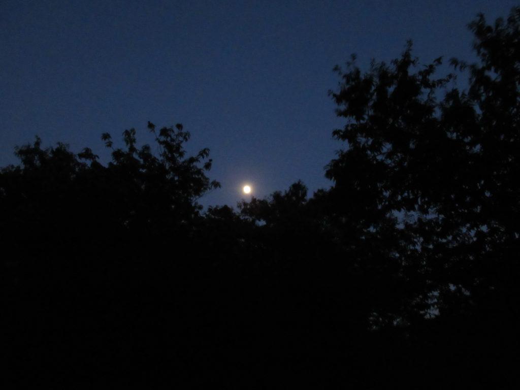 月が出た。
