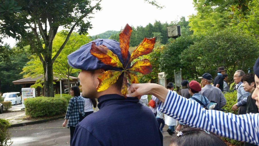 トチノキの葉。
