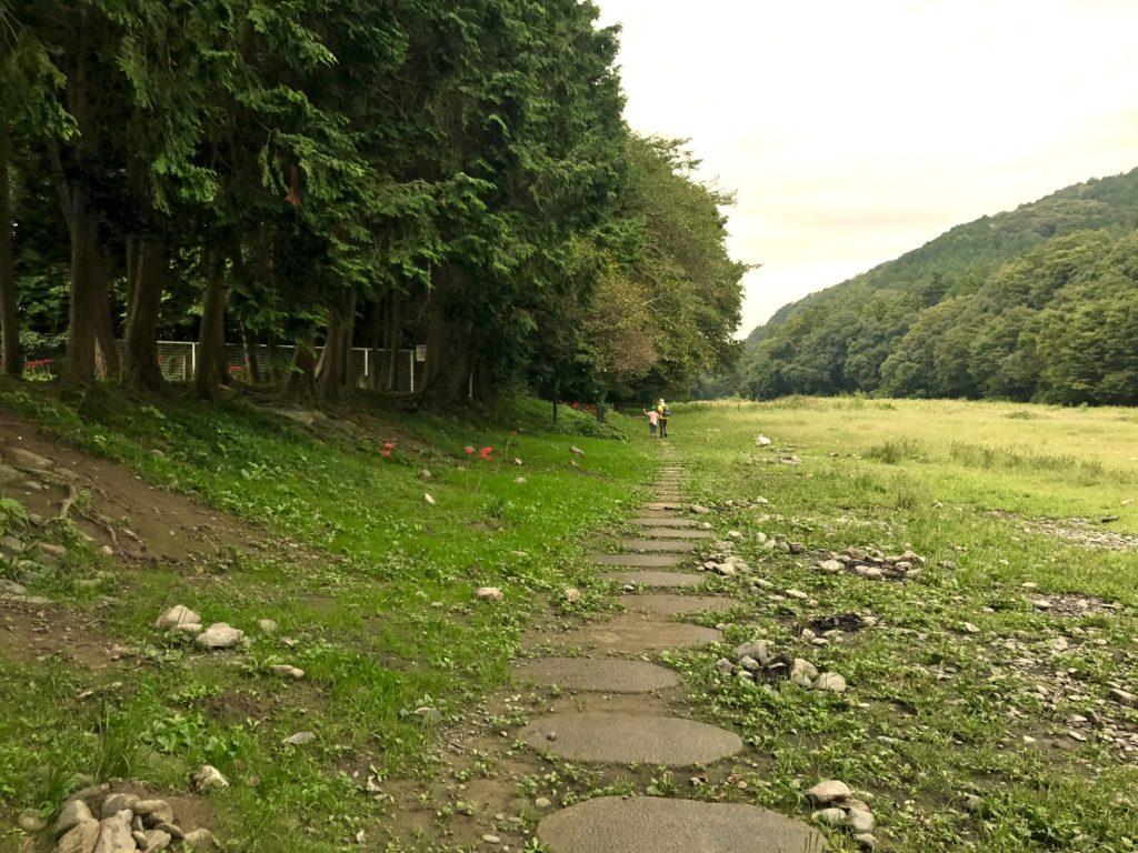 嵐山渓谷の道。