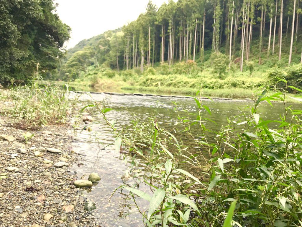 嵐山の川。